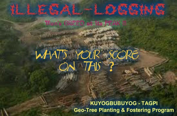 kbee_cover_logging